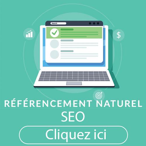 Optimisation de votre référencement naturel pour gagner de nouveaux clients et booster son chiffre d'affaire